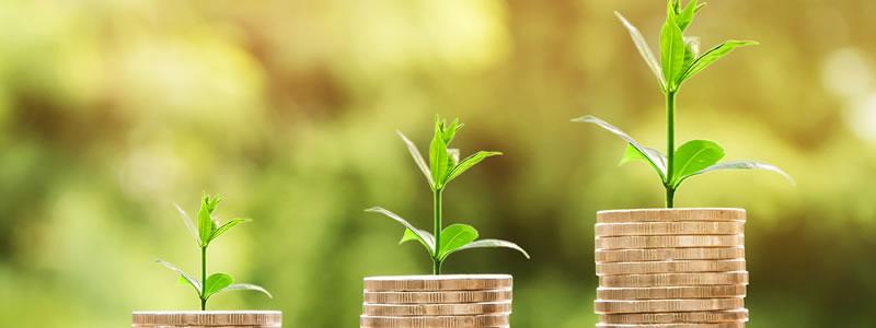Benefícios do sistema de gestão escolar na área financeira